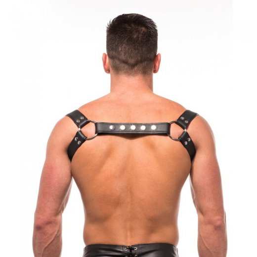 Halter Harness